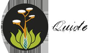 quiote1